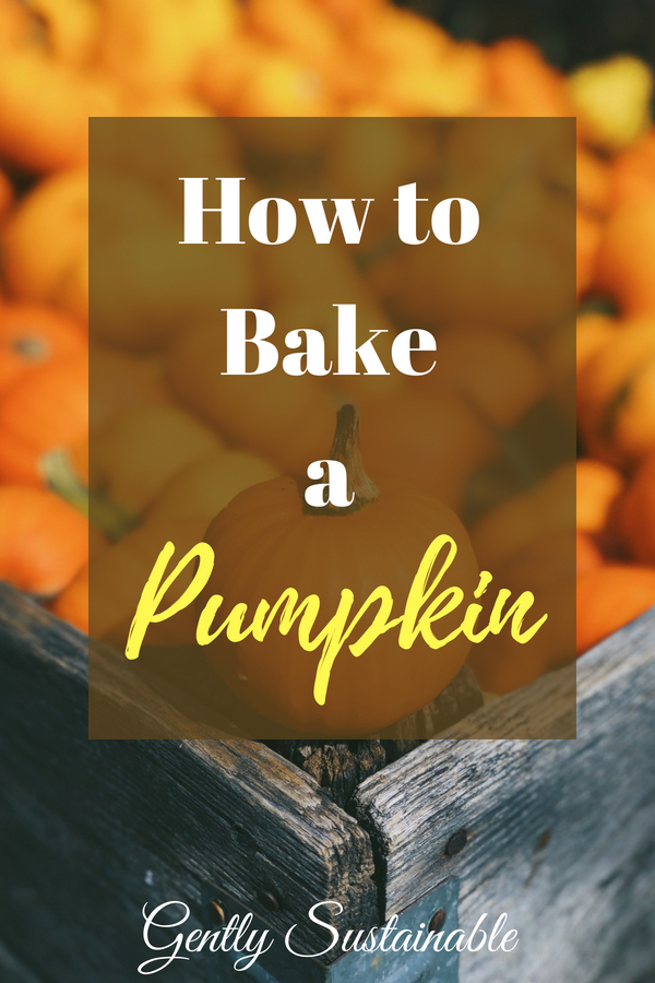 how to bake a pumpkin