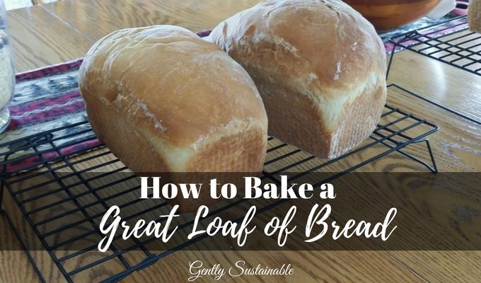 How to Bake a Great Loaf of Bread