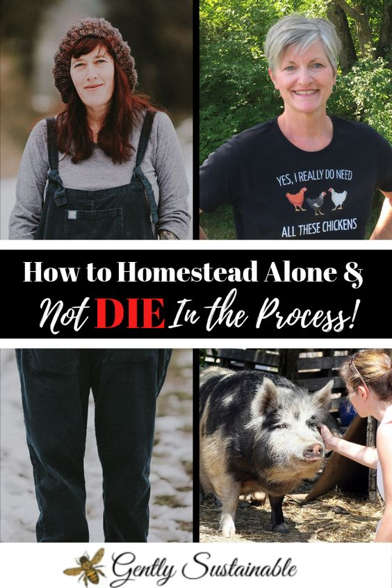 How to Homestead Alone, and Not DIE in the Process