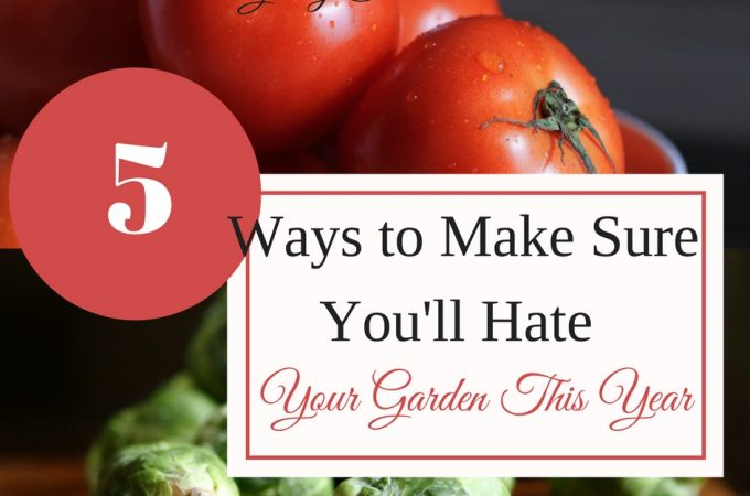 "Why are some garden years better than others? Read ""5 Ways to Make Sure You'll Hate Your Garden This Year"""