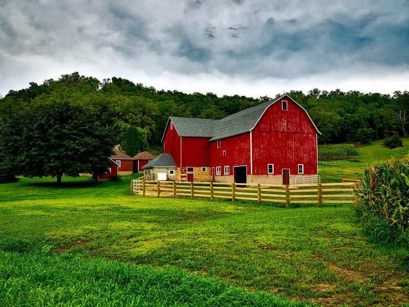 beautiful farm in the summer