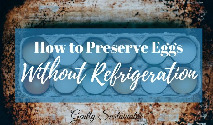 Preserving Eggs in Lime Water