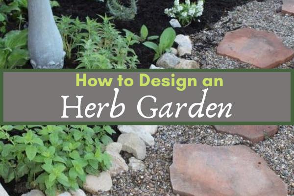 How to Design an Herb Garden