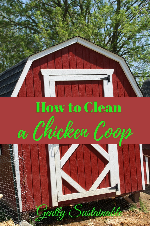 The Easy Way to Clean a Chicken Coop