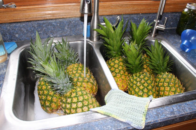 washing pineapples in sink