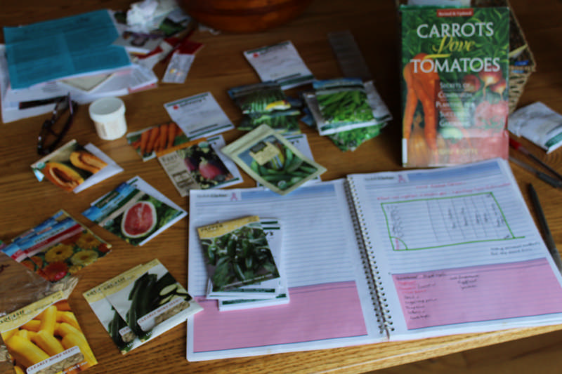 Companion Planting in a Vegetable Garden