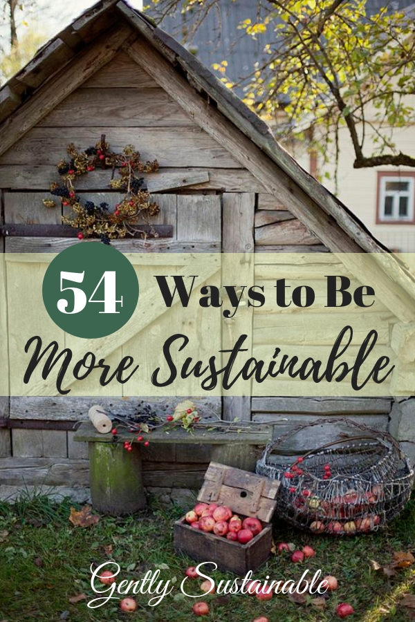 54 Ways to Be More Sustainable