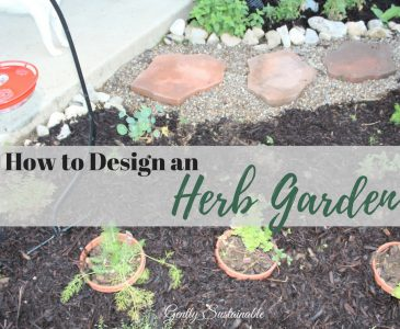 How to Design an Herb Garden