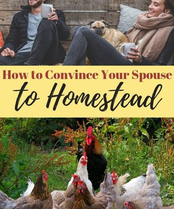 How to Convince Your Spouse to Homestead