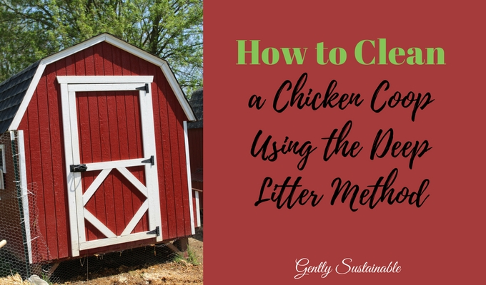 How to Clean a Chicken Coop Using the Deep Litter Method