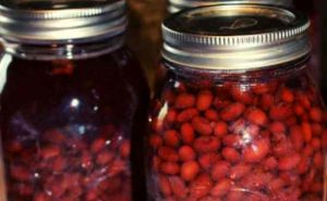 howto can dry beans