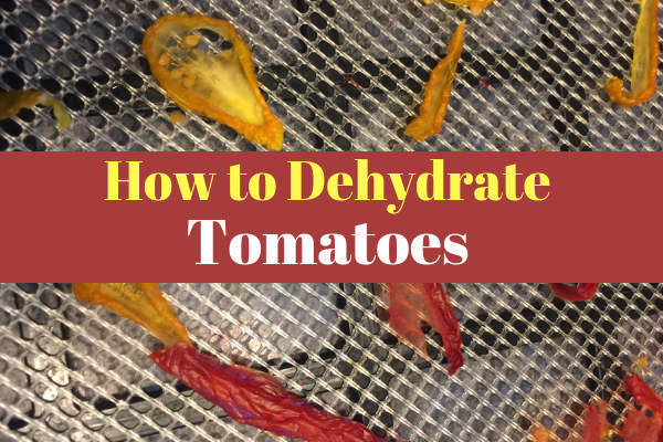 How to Dry Tomatoes Using a Dehydrator