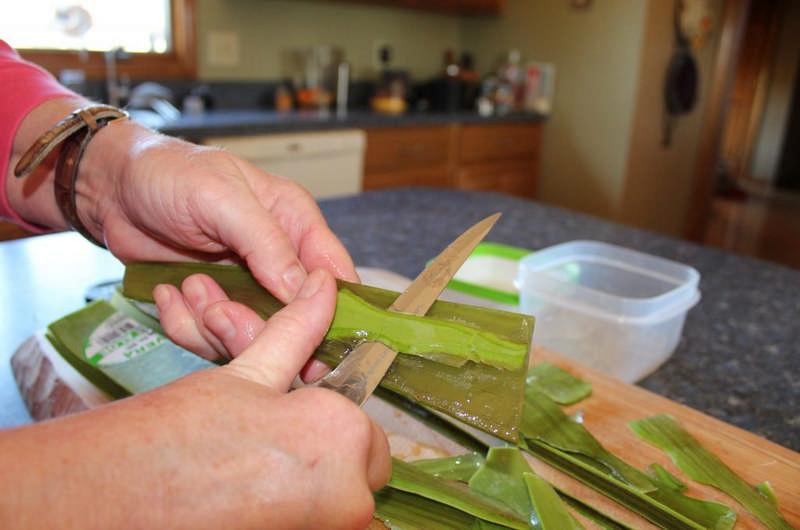 peeling aloe vera leaves