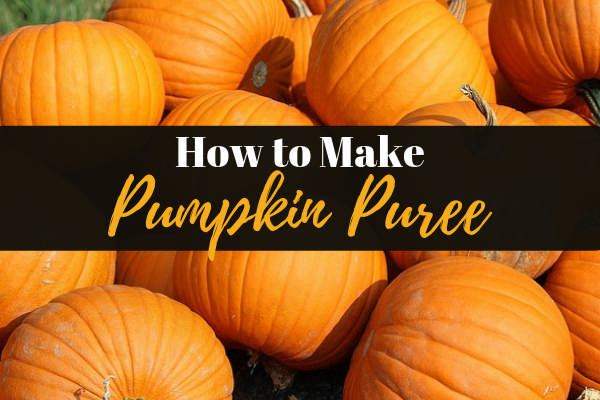 How to Make Easy Pumpkin Puree