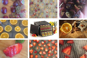 examples of fruit that you can dry