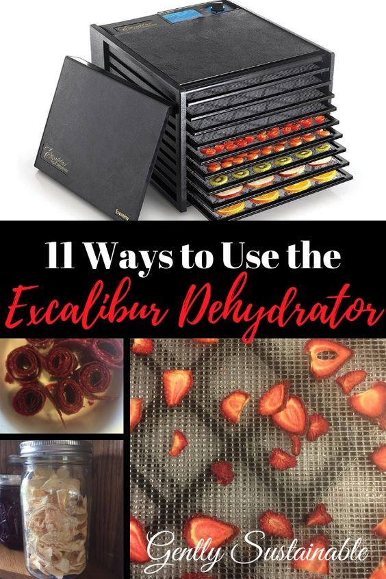 11 Ways to Use the Excalibur Dehydrator