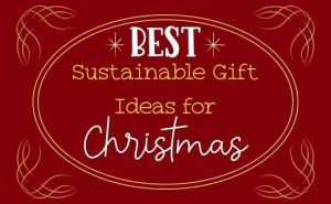BEST sustainable gift ideas for Christmas