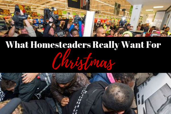 What Homesteaders Really Want for Christmas