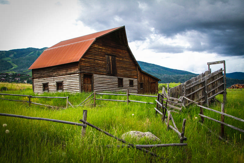 When You Have to Say Goodbye to Homesteading
