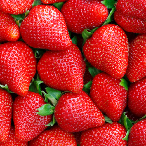 how to grow the best strawberries with chives