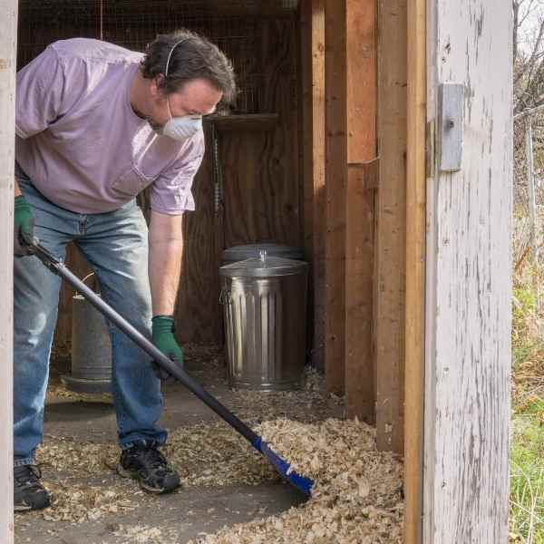 man cleaning chicken coop with n95 mask