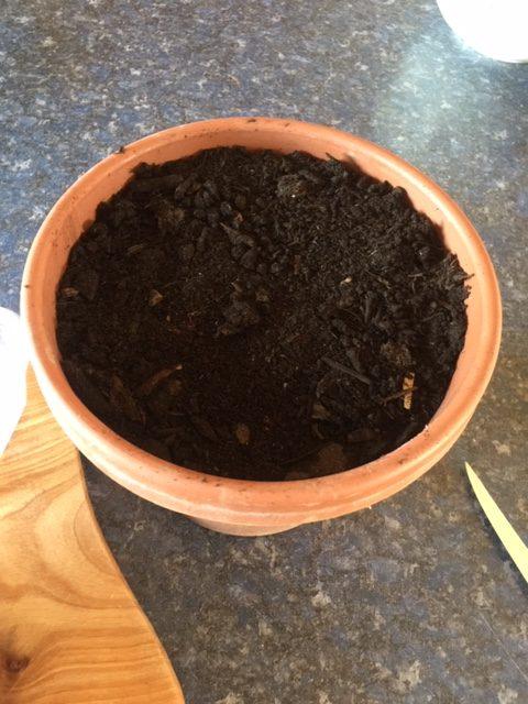 potting soil in flower pot