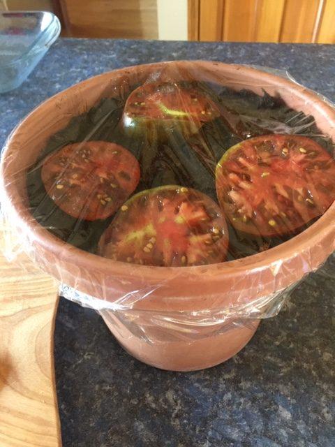 wet method saving tomato seeds