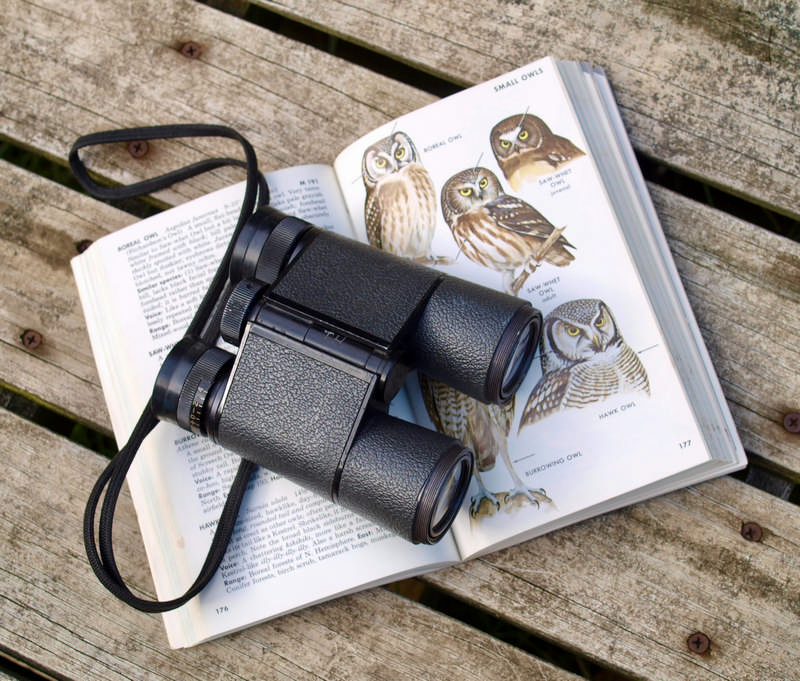 binoculars and book