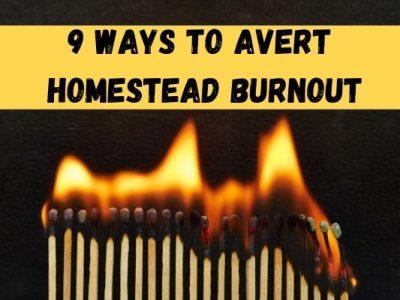 9 Ways to Avert Homestead Burnout