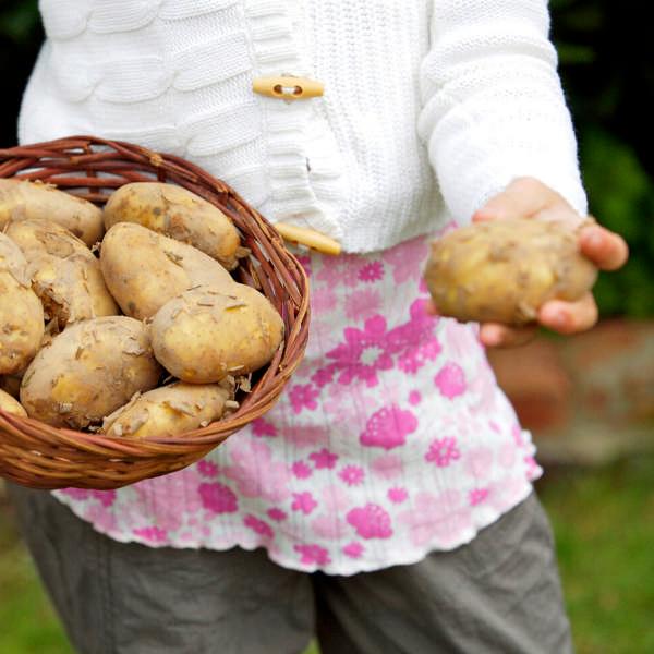 Make Your Own Potato Grow Bag