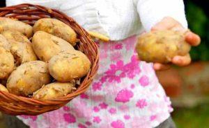 make a potato grow bag