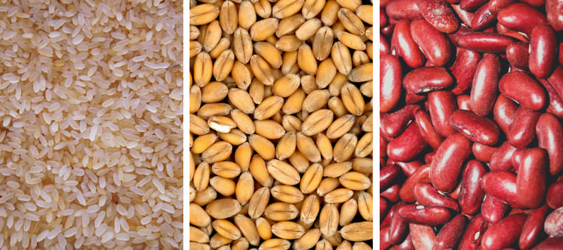 grains to store in mylar bags