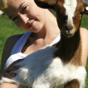 How to be a modern homesteader