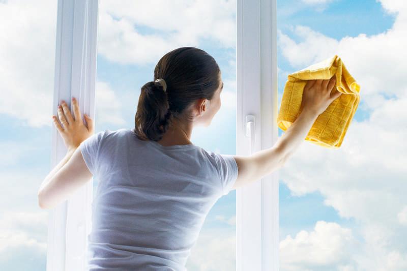 clean windows with vingar