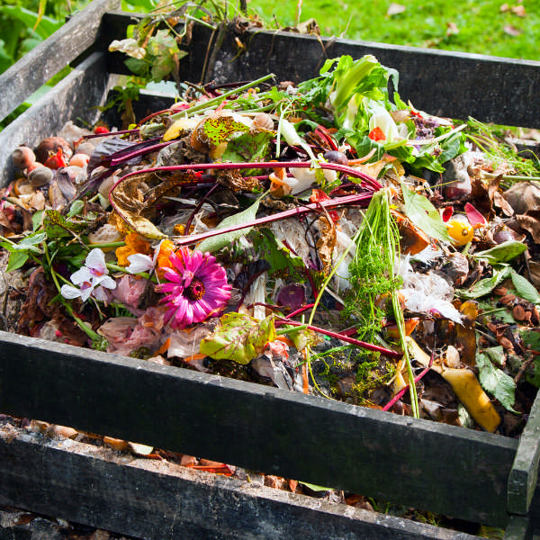 compost pile made from pallets