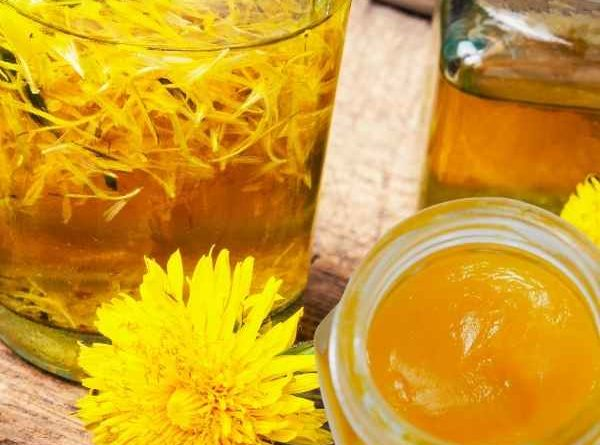 DIY Homemade Dandelion Oil and Salve