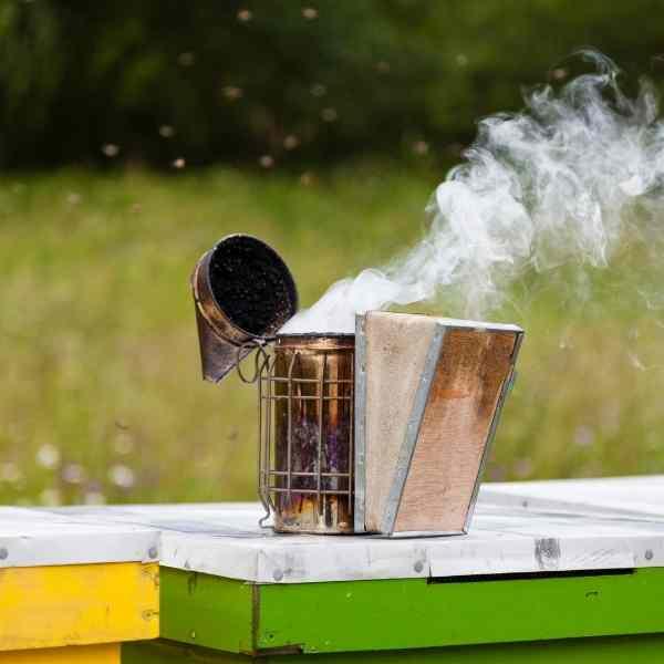 honeybee smoker