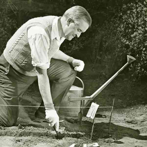 black and white photo of man planting garden