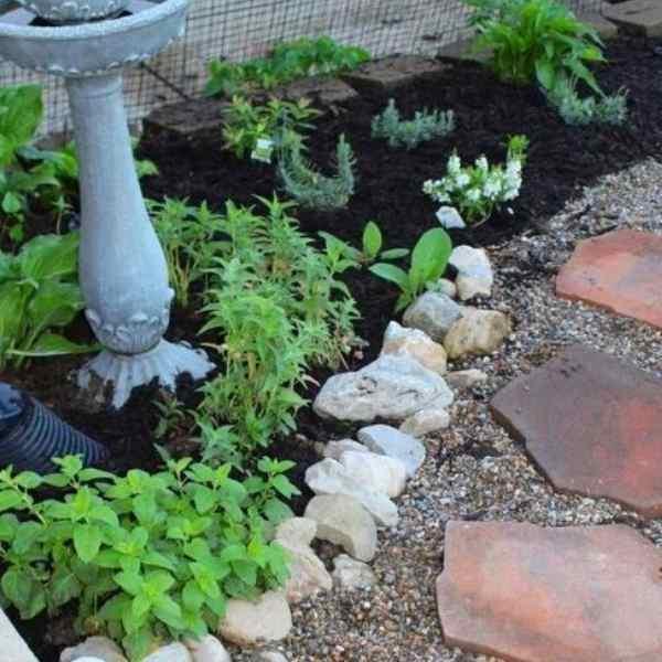 how to design herb garden